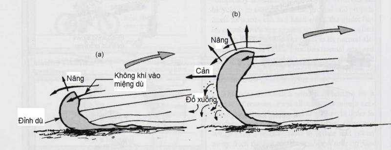 3-3a.jpg