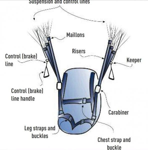 3-1 harness.jpg