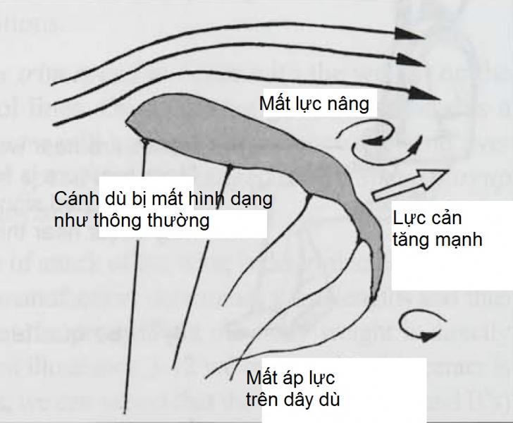 3-14b.jpg