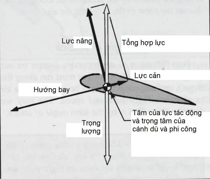3-12.jpg