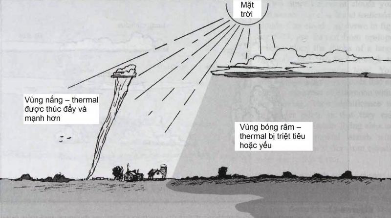 6-21.jpg