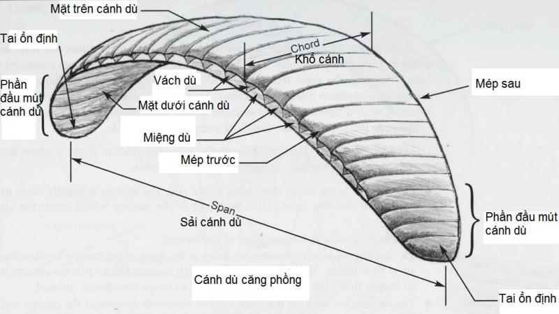 2-2a.jpg
