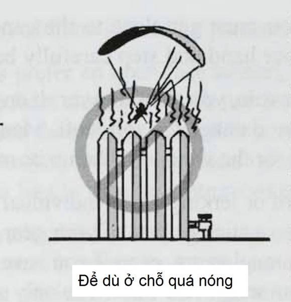 2-5g.jpg