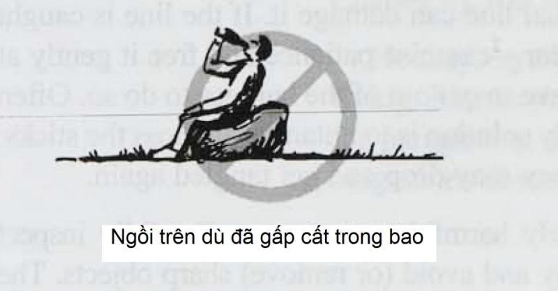 2-5b.jpg