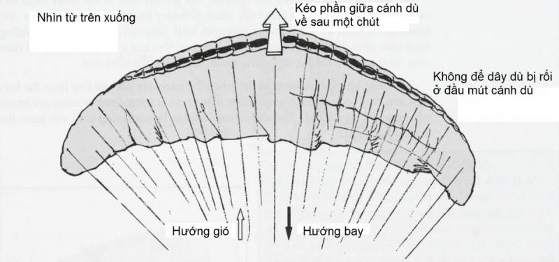 4-4.jpg